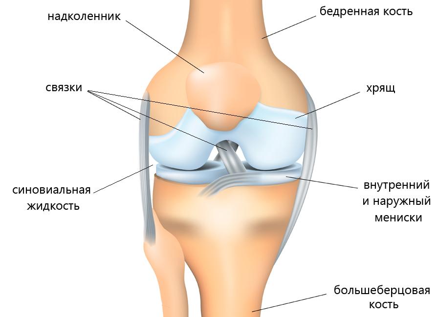 болят ноги хрустят суставы согласен всем выше